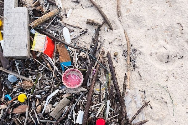 plastic pollution on a beach