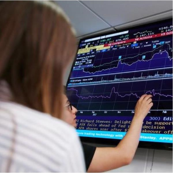 people looking at finance graphs on computer screen