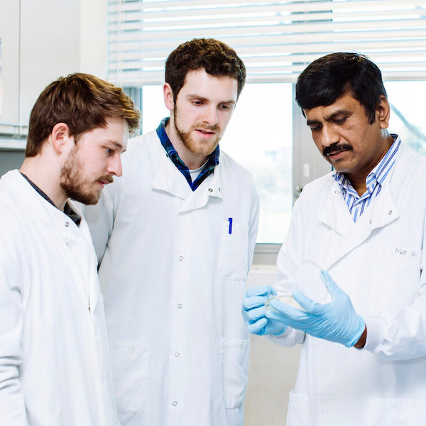 three male scientists looking at their work