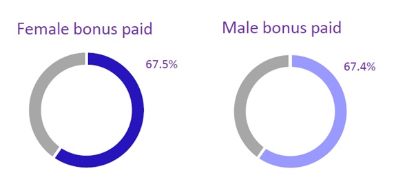 Gender pay gap bonus as pie chart