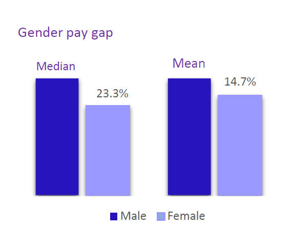 Gender pay gap median and mean as vertical bar chart