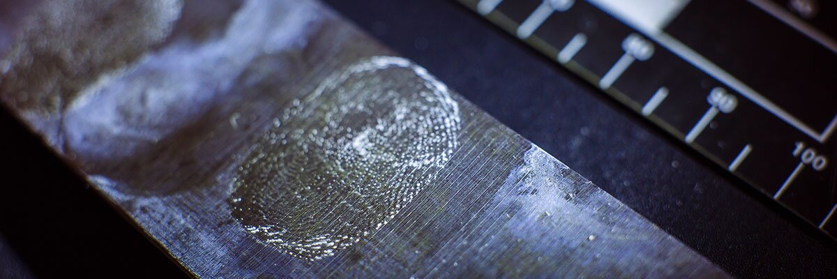 Forensic evidence and fingerprint identification in progress