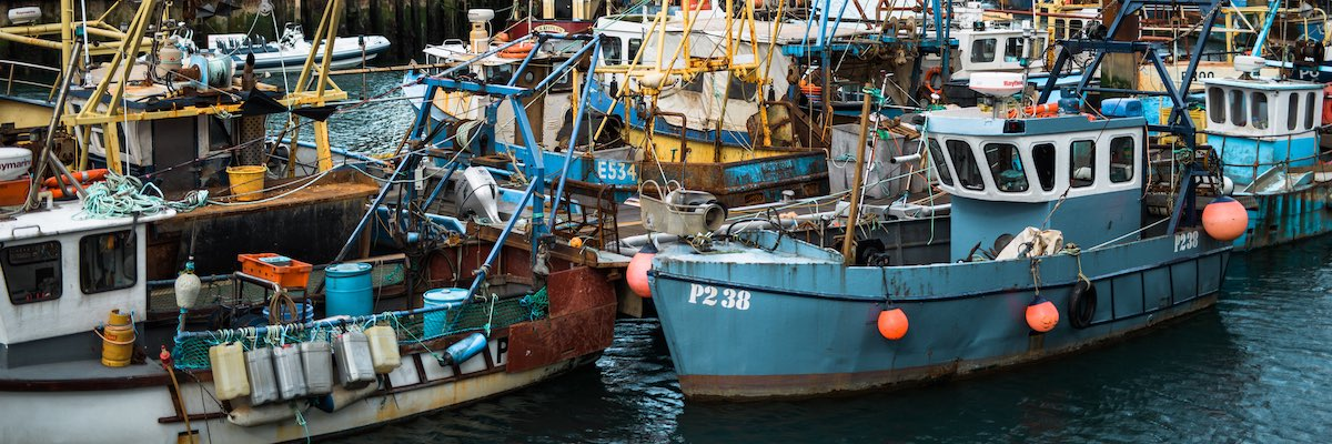 fishing boats in southsea harbour