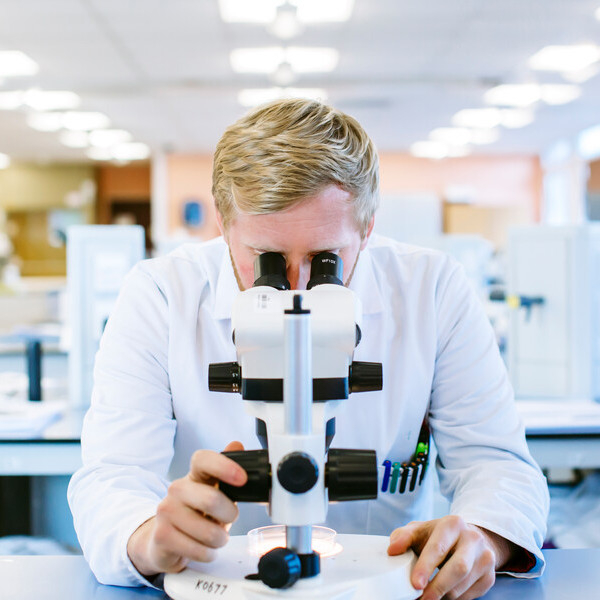 Male student studying in a lab at a microscope