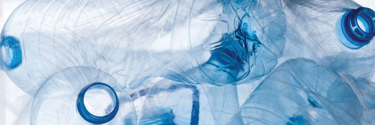 Empty plastic bottles entangled in clear bags