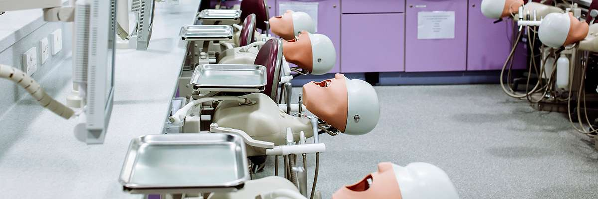 University of Portsmouth Dental Academy dentistry models