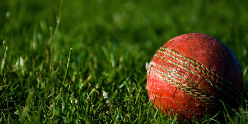 Cricket ball in grass