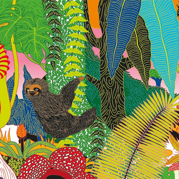 A colourful illustration collage of a jungle, featuring vines, flowers and a sloth