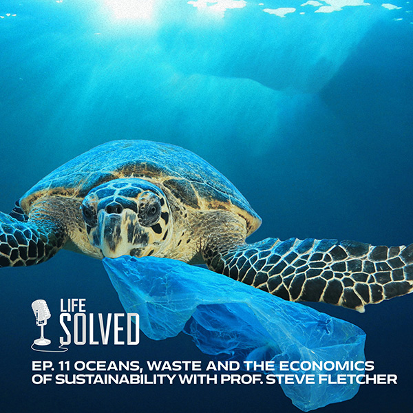 Turtle swimming with plastic bag in its mouth, with Life Solved Logo in corner