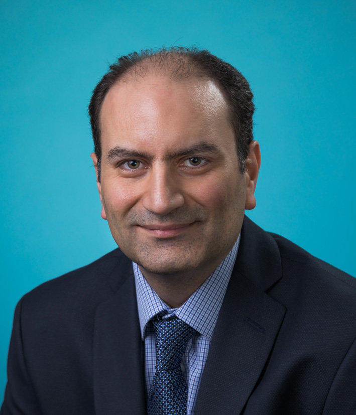 Image of Dr Mehdi Rouholamin